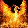 the_rising_phoenix